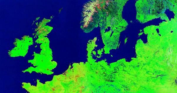 Netcompany-boss efter engelsk storopkøb: Her er planerne, der skal sikre europæisk succes